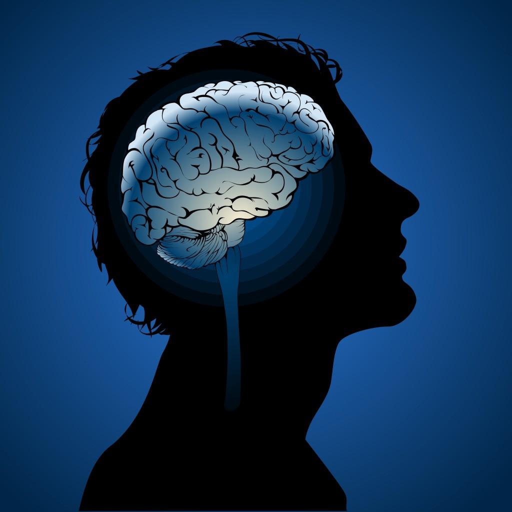 brain in head man vector